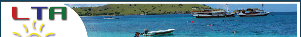 Tour package to Komodo island